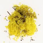 Mousse naturelle Lichen Jaune 50 g