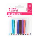 Mini canes Assortiment Fleurs x 10 pcs